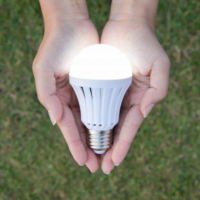 Hand Holding lightbulb